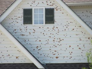 Residential hail damage insurance claim