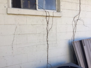 property damage denied claims